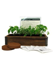 Reclaimed barnwood herb garden